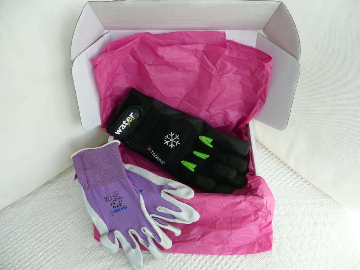 044 Showa 370 Lightweight glove and Tegera 517 Thermal Waterproof glove